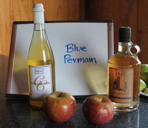Blue-Permain