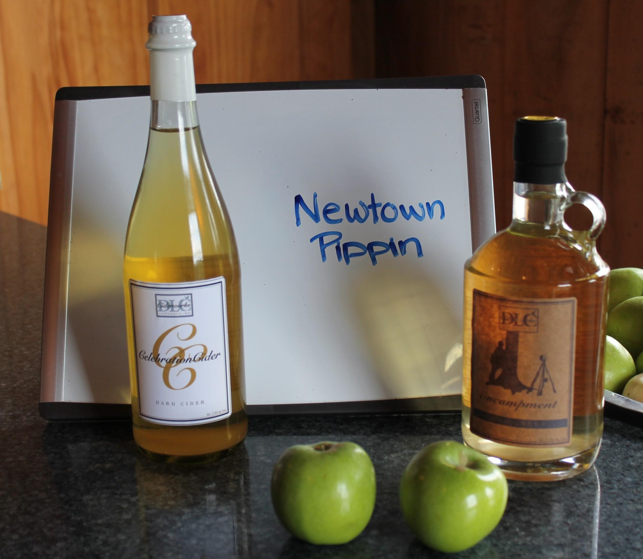 Newtown Pippin