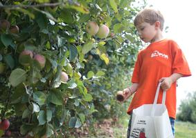 First Press Draws Fans of Cider from the Region