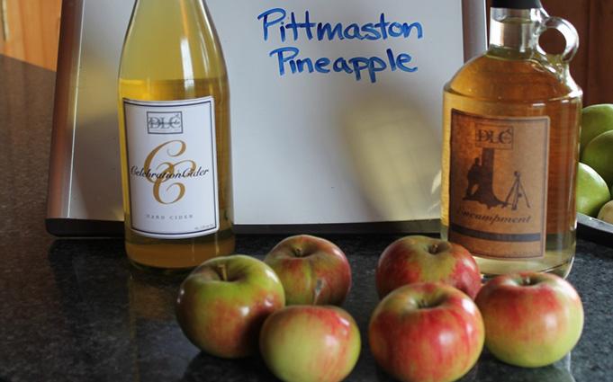 Pitmaston Pineapple