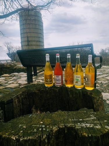 hard-cider-tour-tasting